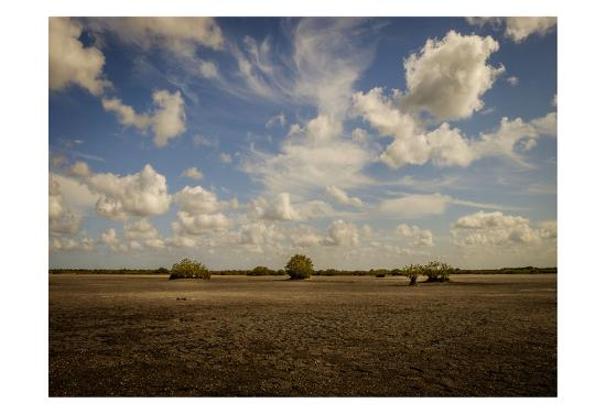 Lonely Earth-Glenn Taylor-Art Print
