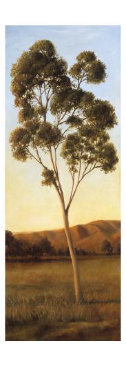Lonely Eucalyptus I-Cory Steffen-Premium Giclee Print