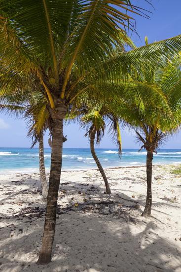 Long Bay, East Coast, Portland Parish, Jamaica, West Indies, Caribbean, Central America-Doug Pearson-Photographic Print