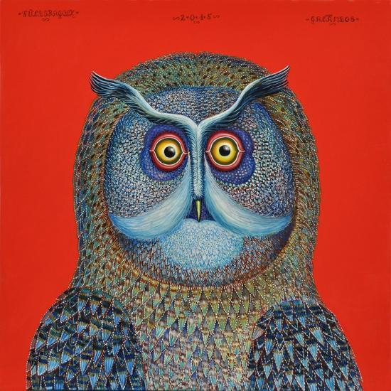 Long-Eared Owl, 2015-Tamas Galambos-Giclee Print