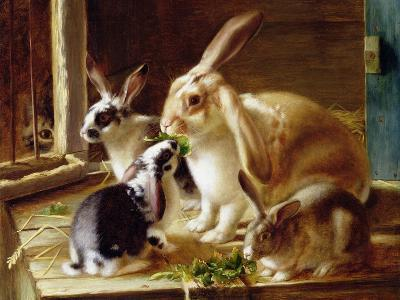 Long-Eared Rabbits in a Cage, Watched by a Cat-Horatio Henry Couldery-Giclee Print