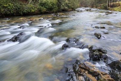 Long Exposure of a Mountain Stream in North Carolina-James White-Photographic Print