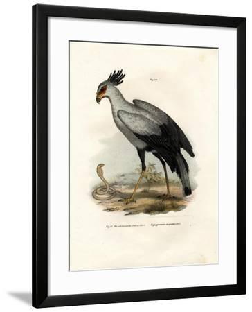 Long-Legged Raptorial Bird, 1864--Framed Giclee Print