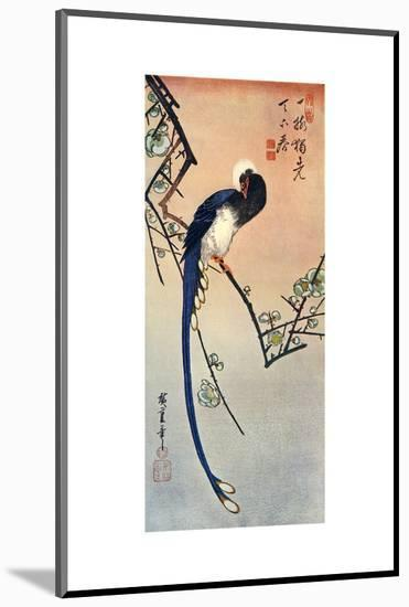 Long Tailed Blue Bird on Branch of Plum Tree in Blossom, 19th Century-Ando Hiroshige-Mounted Premium Giclee Print