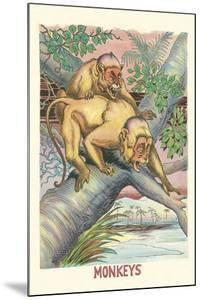 Long-Tailed Monkeys