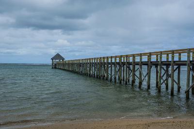 Long Wooden Pier, Coral Coast, Viti Levu, Fiji, South Pacific-Michael Runkel-Photographic Print