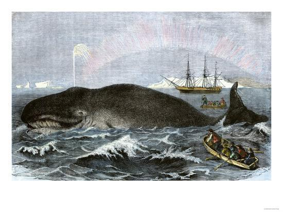 Longboat Crew Attacking a Whale with Hand Harpoons in the Arctic, c.1800--Giclee Print