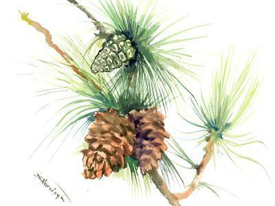 https://imgc.artprintimages.com/img/print/longleaf-pine-tree-2_u-l-f98tx20.jpg?p=0