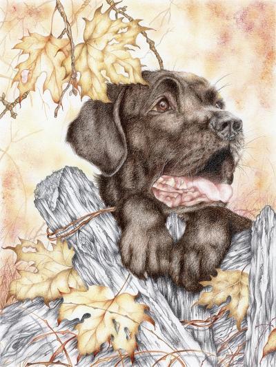 Look Back-Karen Middleton-Giclee Print