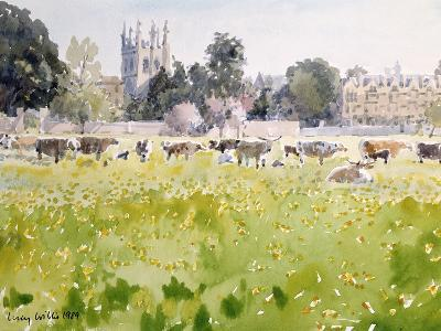 Looking across Christ Church Meadows, 1989-Lucy Willis-Giclee Print