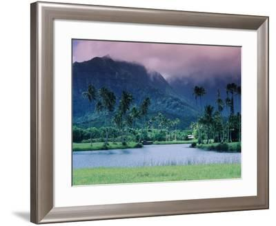 Looking across Tropical Landscape Up to Mt Waialeale from Hanalei-Ann Cecil-Framed Photographic Print