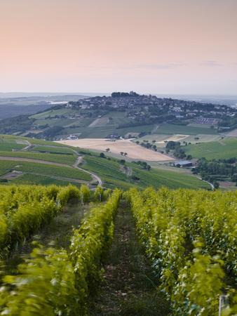 https://imgc.artprintimages.com/img/print/looking-down-rows-of-vines-towards-the-village-of-sancerre-cher-loire-valley-centre-france-eur_u-l-pfwa5l0.jpg?p=0