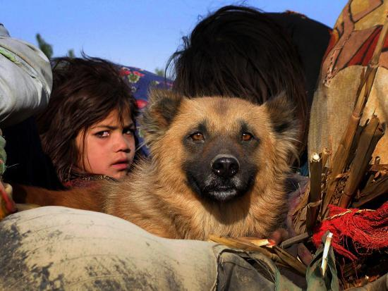 Looking Out from a Vehicle as They Wait for Security Clearance at a Checkpoint on Outskirt of Bannu--Photographic Print