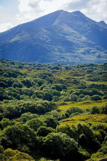 Looking over to Cana Mountains, Beara, County Kerry-Chris Hill-Photographic Print