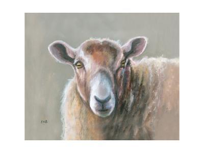 Looking Sheepish-Louise Brown-Giclee Print