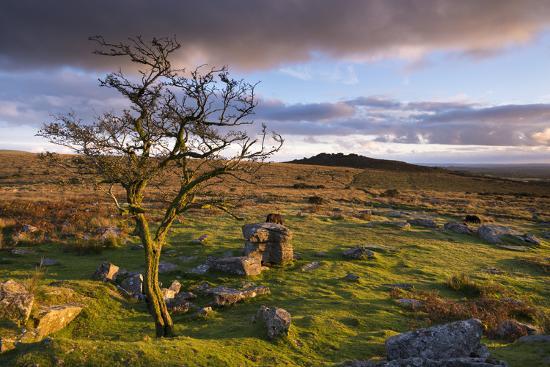 Looking to Pew Tor from Feather Tor, Dartmoor, Devon, England. Autumn (September)-Adam Burton-Photographic Print