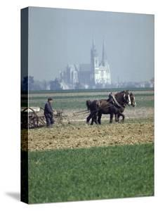 French Farmer Laying Fertilizer on His Field with a Team of Percheron Horses by Loomis Dean