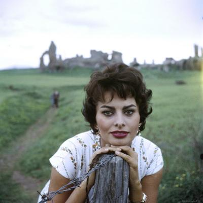 Portrait of Actress Sophia Loren