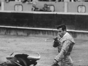 Spanish Matador, Antonio Ordonez Prepares to Kill the Charging Bull During Bullfight by Loomis Dean