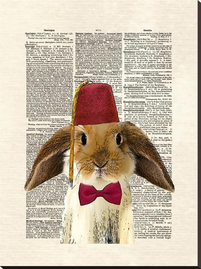 Lop Bunny-Matt Dinniman-Stretched Canvas Print