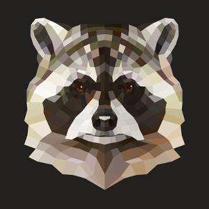 Raccoon by Lora Kroll