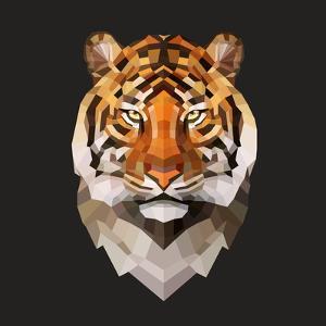 Tiger by Lora Kroll
