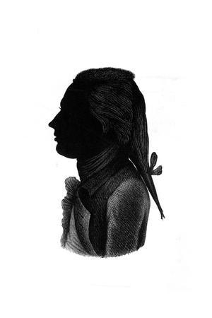 https://imgc.artprintimages.com/img/print/lord-nelson-silhouette_u-l-ps1dtn0.jpg?p=0