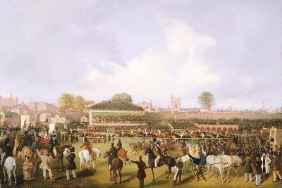 Lord Westminster's Cardinal Puff, with Sam Darling Up, Winning the Tradesman's Plate, Chester,…-William Tasker-Giclee Print