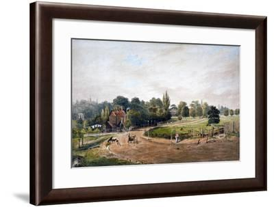 Lordship Lane, Camberwell, London, C1860-JC Mandy-Framed Giclee Print