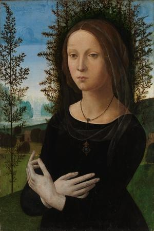 Portrait of a Young Woman, c.1475-80
