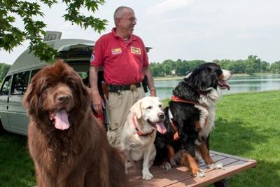 Trainers Work with Dogs to Teach Them How to Rescue People from Dangerous Water Events