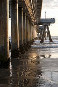 Venice Beach Pier by Lori Hutchison