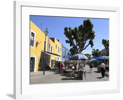 Los Sapos Antiques and Flea Market, Puebla, Historic Center, UNESCO World Heritage Site, Puebla Sta-Wendy Connett-Framed Photographic Print