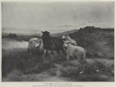 Lost Sheep-Henry William Banks Davis-Giclee Print