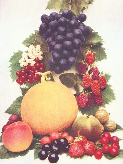 Lots Of Fruit-Found Image Press-Art Print