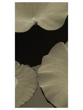 https://imgc.artprintimages.com/img/print/lotus-ii_u-l-q11al0d0.jpg?p=0