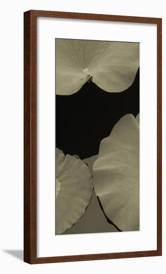Lotus II-Tang Ling-Framed Art Print