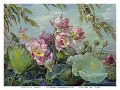 Lotus Land Magic - Lotus Blossoms and Leaves-Maria Berger Smeraldi-Art Print