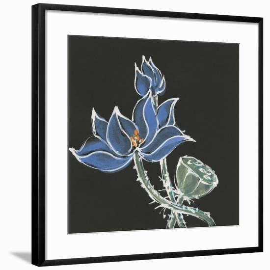 Lotus on Black VI-Chris Paschke-Framed Art Print