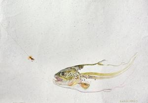 Trout Chasing a Fisherman's Fly (1991) by Lou Gibbs