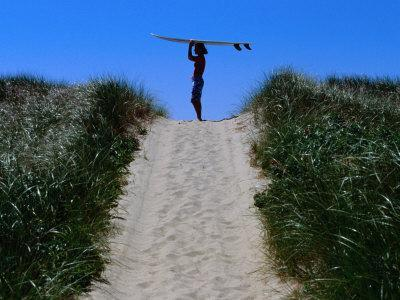 Surfer Carrying Board on Dunes at Long Point, Martha's Vineyard, Massachusetts, USA