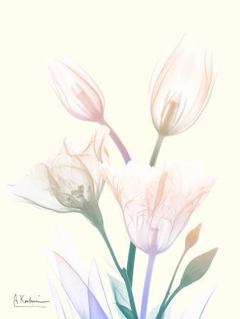 https://imgc.artprintimages.com/img/print/loud-tempo-1_u-l-q1bca6w0.jpg?p=0