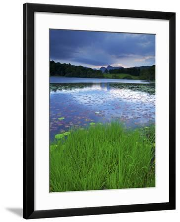 Loughrigg Tarn, Lake District National Park, Cumbria, England, United Kingdom, Europe-Jeremy Lightfoot-Framed Photographic Print