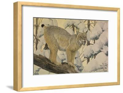 A Painting of a Canada Lynx Standing on Fallen Tree Trunk