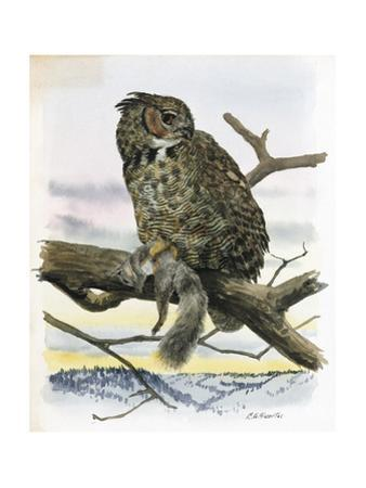 An Illustration of a Great Horned Owl with Prey in His Grip