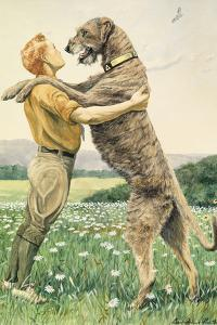 An Irish Wolfhound, on His Hind Legs, Stands Taller Than His Master by Louis Agassi Fuertes