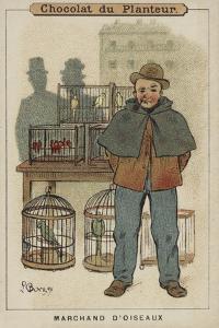 Marchand D'Oiseaux by Louis Borgex