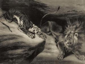 L'attaque du tigre by Louis Boulanger