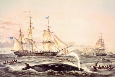 Whaling Off the Cape of Good Hope