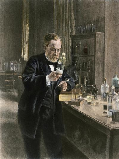 Louis Pasteur in His Laboratory--Giclee Print